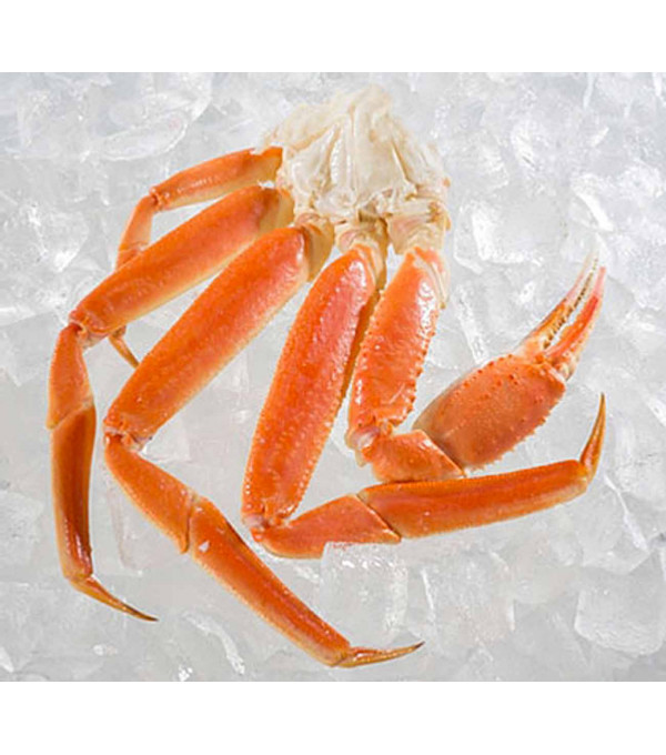 KING CRABE 1100+  RUSSIE X 22KG LE CT