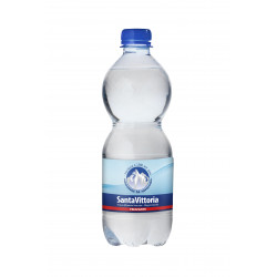 EAU MINERALE GAZEUSE PET 50CL X 12U CT
