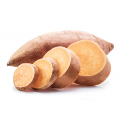 PATATE DOUCE CAL.12 (+-800GR) LE KG CHAIR ORANGE HONDURAS