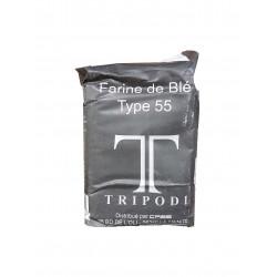 FARINE TYPE 55 SACHET 1KG X 10 U LE CT