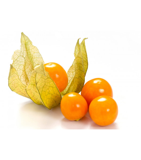 PHYSALIS COLOMBIE BQ 100GR