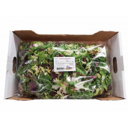 MIX CROQUANT FRANCE CARTON 1KG